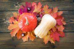 Сбор осени, тыква, красочные листья осени на деревянной доске жизнь падения все еще Взгляд сверху Стоковое Изображение