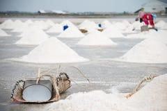 Сбор лотка соли Стоковые Изображения RF