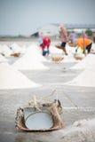 Сбор лотка соли Стоковые Фото