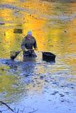 Сбор пруда Стоковая Фотография