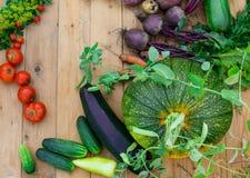 Сбор свежих овощей на деревянной предпосылке Взгляд сверху Картошки, морковь, сквош, горохи, томаты Стоковое Изображение RF