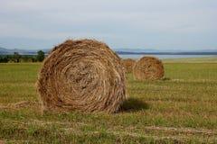 Сбор сена в связках стоковые фотографии rf
