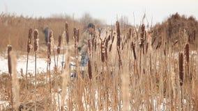 Сбор тростника в зиме видеоматериал