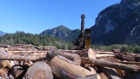 Сбор хоботов деревянного промышленного корабля moving деревянных видеоматериал