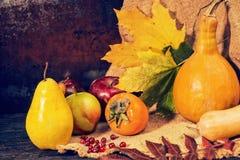 Сбор яблок, груши, рябины и тыкв лежа на linen ткани Стоковые Изображения