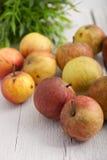 Сбор Яблока стоковая фотография rf