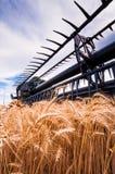Сбор IX пшеницы Стоковые Изображения