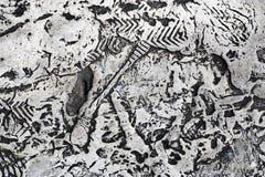 Сброс формирует на стене сформированной высушенной белой краской Стоковое Изображение RF