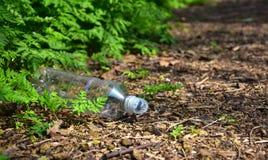 Сброшенная пластичная бутылка засаривает путь леса Стоковая Фотография RF