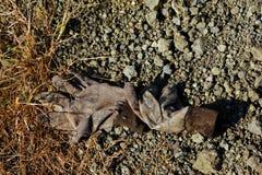 Сброшенные перчатки на шахте диаманта Стоковое Фото