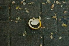 Сброшенный апельсин Стоковые Фото