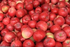 сбывание красного цвета яблок Стоковые Изображения RF