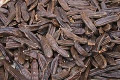 сбывание саранчука предпосылки коричневое Стоковая Фотография RF