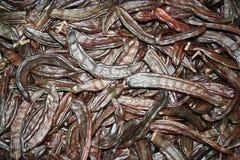 сбывание саранчука предпосылки коричневое Стоковое Изображение RF