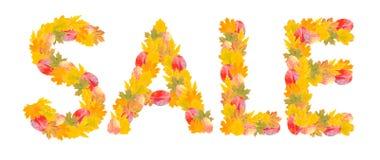 СБЫВАНИЕ слова от листьев Стоковая Фотография