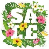 сбывание Тропические цветки, листья и заводы Стоковая Фотография