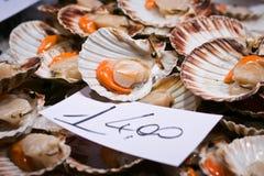 сбывание rialto рынка scallops venice Стоковые Фото