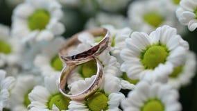 Свадьба золота на украшениях diamon всхода крупного плана макроса колец цветков стоцвета сток-видео