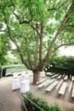 Свадьба настроенная в саде Стоковая Фотография RF