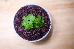Сваренная тайская черная ягода риса жасмина Стоковые Изображения RF