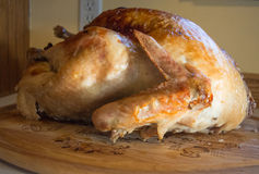 Сваренная Турция Стоковые Изображения RF