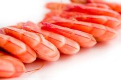 сваренные креветки Стоковое Фото