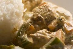 Сваренные рис и цыпленок Стоковое Изображение