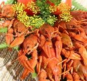 сваренные crayfish Стоковое Фото