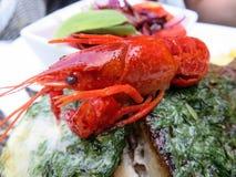 сваренные crayfish Стоковое Изображение