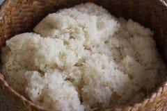 Сваренный липкий рис в контейнере Стоковое фото RF
