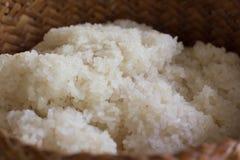 Сваренный липкий рис Стоковая Фотография
