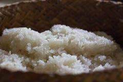 Сваренный липкий рис Стоковые Фото