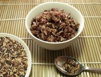 Сваренный органический смешанный рис Стоковое Фото