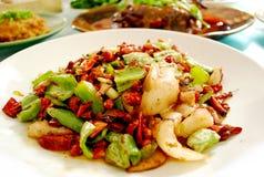 сваренный свинина sichuan еды традиционный Стоковое фото RF