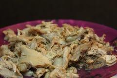 Сваренный цыпленок shredded Стоковые Фото