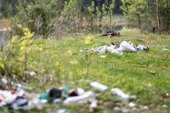 Свалка мусора в древесинах Стоковая Фотография