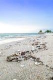 Свалка мусора на пляже стоковое фото rf
