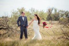 Свадьба и любовная история в природе Стоковая Фотография RF