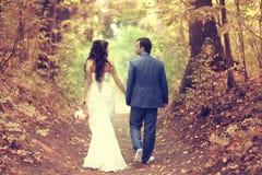 Свадьба осени в парке Стоковая Фотография