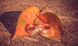 Свадьба осени Стоковое Фото