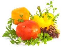 свежая белизна томата перца зеленых цветов сладостная Стоковые Изображения