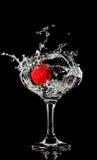 свежая брызгая клубника Стоковая Фотография RF