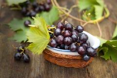 Свежая виноградин-Международная еда Стоковое фото RF