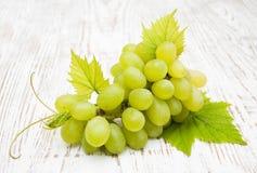 свежая виноградина Стоковые Фото