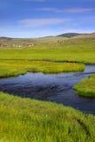 свежая вода потока Стоковые Фотографии RF
