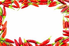 Свежая граница красного перца Стоковая Фотография