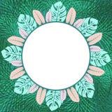 Свежая зеленая тропическая картинная рамка круга бесплатная иллюстрация