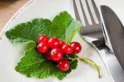 Свежая зрелая органическая красная смородина в плите Стоковое Изображение