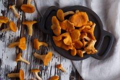 Свежая лисичка грибов на деревянной предпосылке Стоковое Изображение