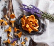 Свежая лисичка грибов на деревянной предпосылке Стоковая Фотография RF